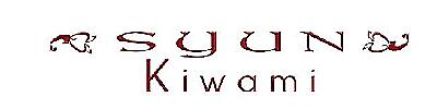 syun_kiwami_.png